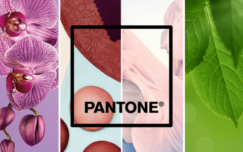 Pantone Color of the Year, a Quick Recap Before the Big Announcement_feat