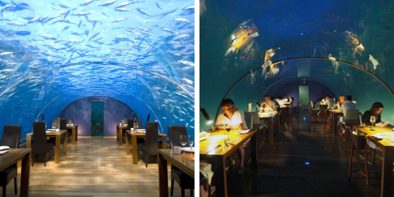 5 (Very) Unusual Restaurants In The World That You Have To Know!
